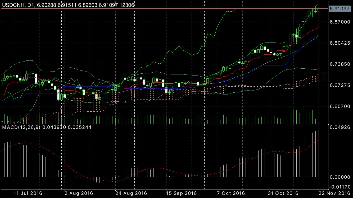 daily usdcnh